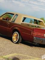 1984 Buick Regal - Cuervo Gold