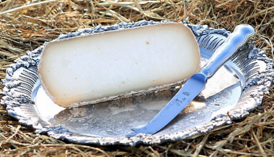 Serbian Pule Cheese