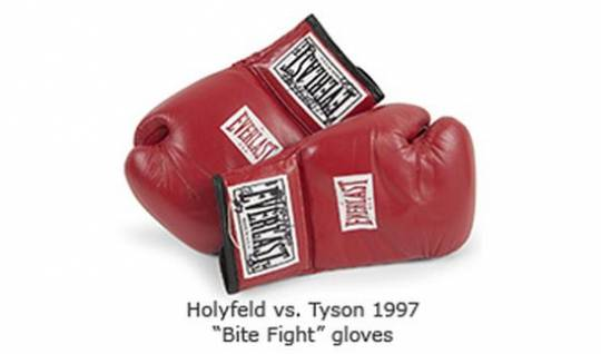 Bite Fight Gloves