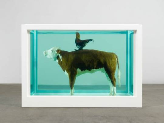 Damien Hirst artwork for London restaurant is not for PETA's veggie lovers