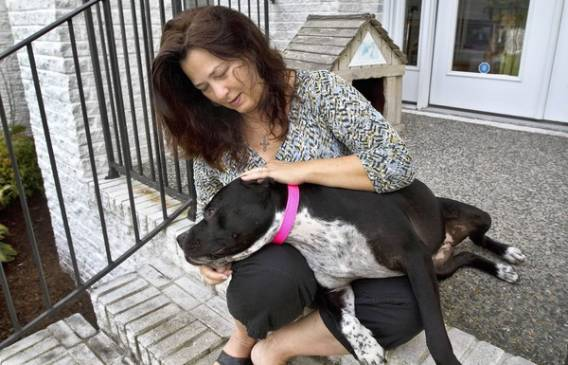 Elizabeth Taylor and million of supporters work for Dogs Deserve Better program