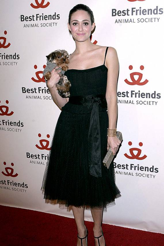 Actress Emmy Rossum owns an adorable Yorkie named Cinnamon as her pet.