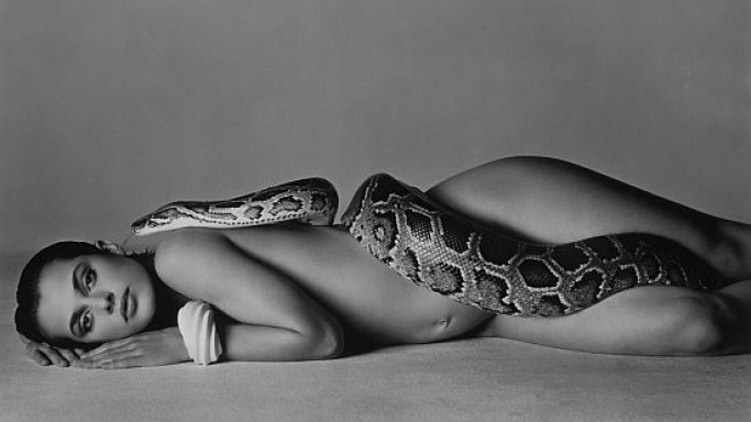 One of the most famous Classic photographs from Richard Avedon's slated for $50,000