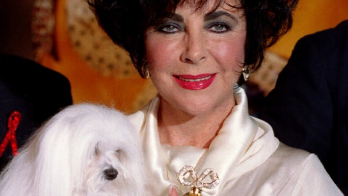 Elizabeth Taylor's  Jewelry Collection