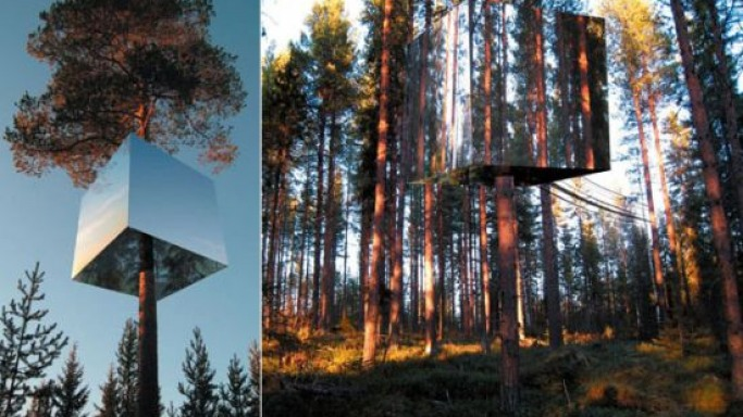 Treehotel in Harads: Tree houses designed as world-class hotel rooms
