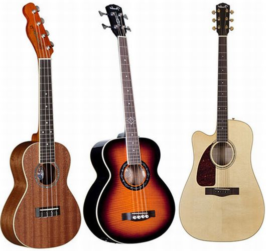Fender limited edition acoustic guitar range