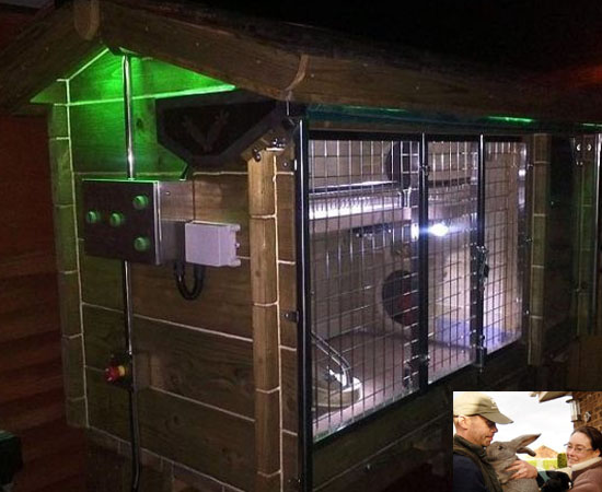 Couple builds £10,000 luxury hutch for their two rabbits: Playboy life indeed!