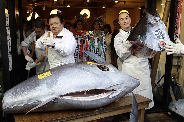 Most expensive tuna fish