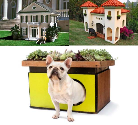Luxury doghouses suited for the world's most loved dogs