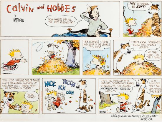 One of the most iconic comic strips, Calvin and Hobbes