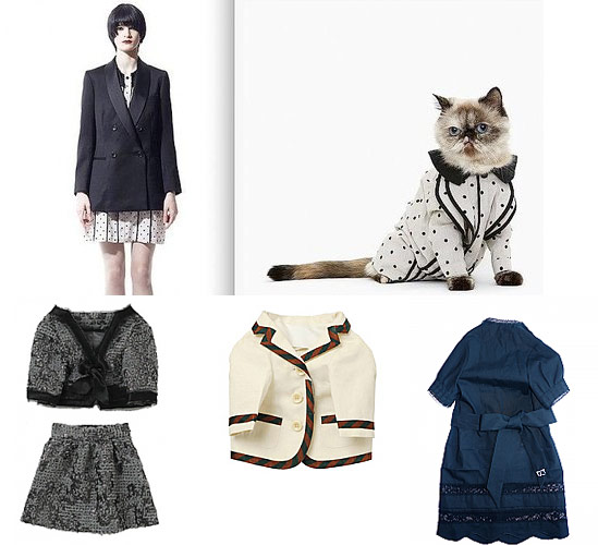 Feline Couture