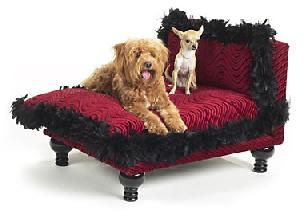 luxurious poochie beds